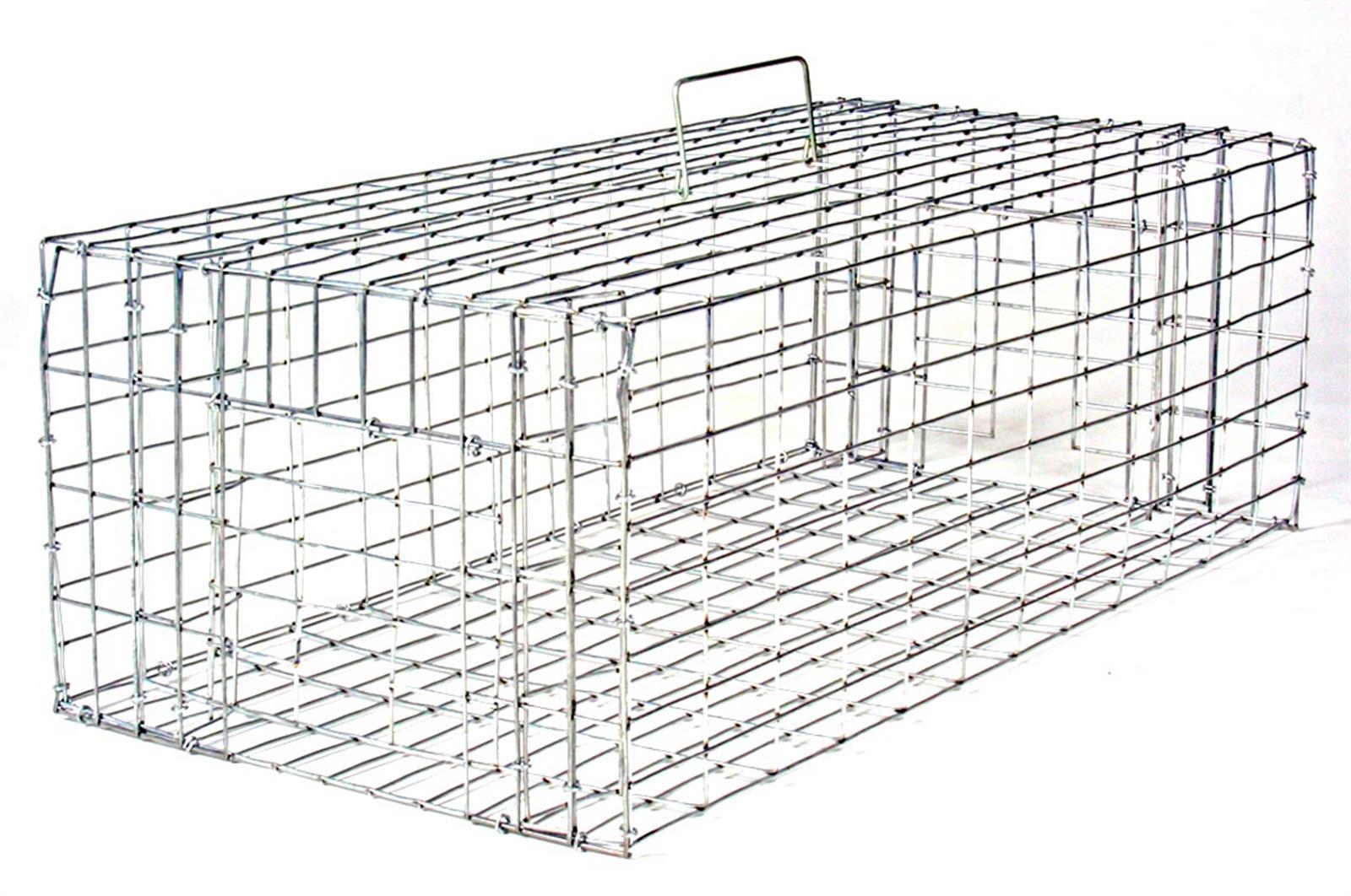 small pigeon trap 24x12x8