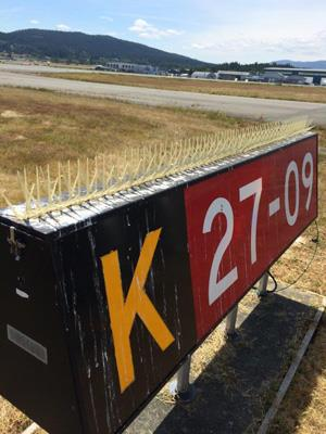 Runway sign with plastic spikes installed 2