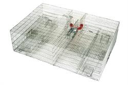 Large Repeating Sparrow Trap 36x24x10