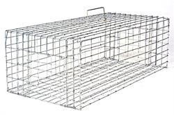 Small Pigeon Trap 24x12x8