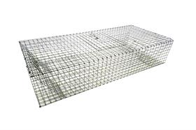 HD Folding Pigeon Trap 36x16x8