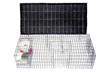 Medium Pigeon Trap Loaded 35x16x8