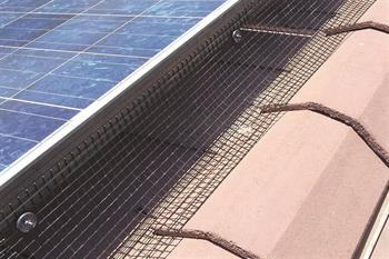 Solar Panel Exclusion install