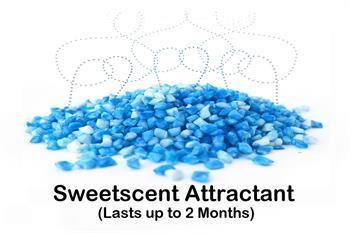 BioGents Sweetscent attractant