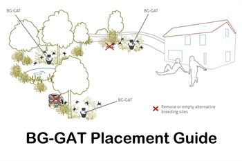 BG-GAT placement guide