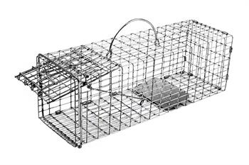 Small Animal Trap Front Release 18x5x5