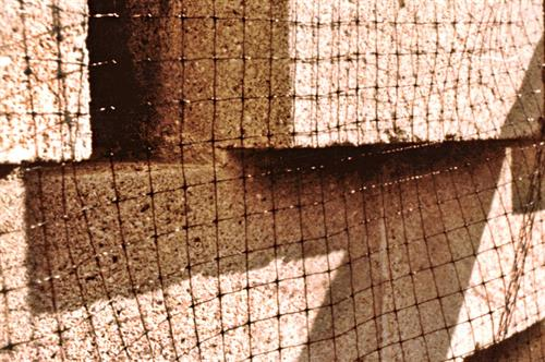 Netting example