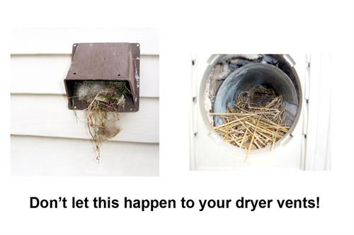 Clogged up dryer vents