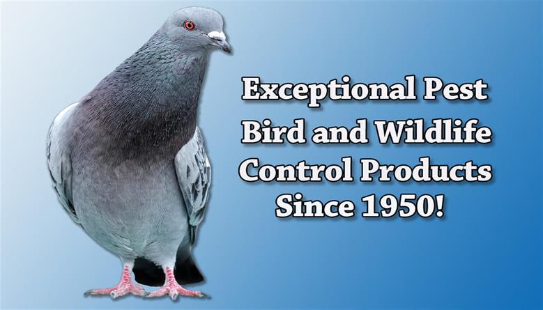Effective Pest Bird & Wildlife Control Products   Nixalite