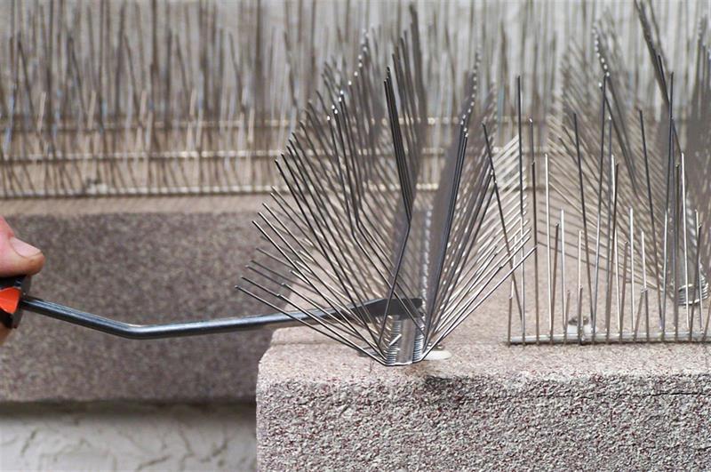 Nixalite Bird Spike Installation Tool Nixalite
